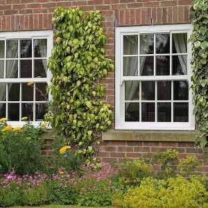 upvc vertical sliding sash windows quotes hockley essex